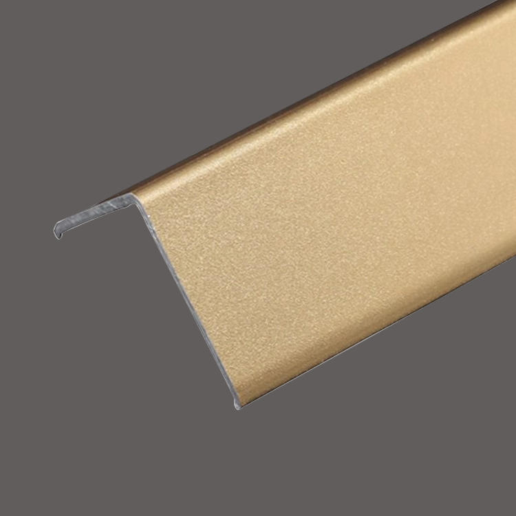Champagne gold stainless steel L decorative strip